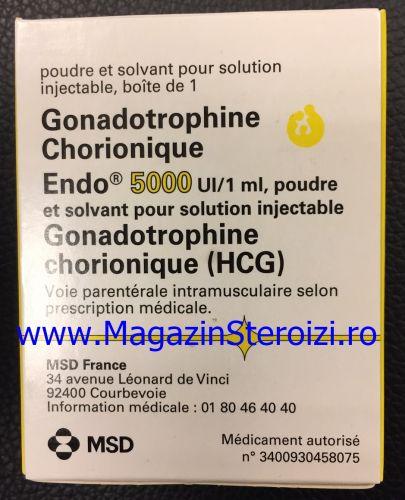 Gonadrotrophine Chorionique (HCG)